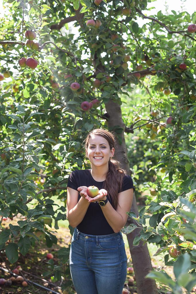 apples.3.jpg