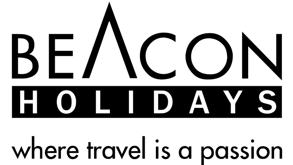 Copy of Travel Partner