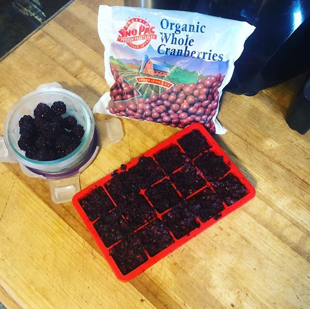Try adding organic berries to your dog's weekly routine in moderation for a boost of vitamin c, fiber, and antioxidants! Purée and freeze them into cubes to make them easy to store and convenient to add to meals a few days a week. #dwwcaninenutruitionconsulting #foodismedicine #bioavailablenutrition #wholefoodnutrition #youhavechoices #cancerfighters