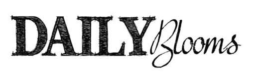 logo-dailyblooms_grey_510x.png