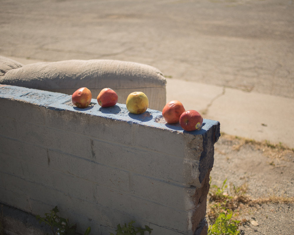 25.2_Abandoned Fruit, Riverside.jpg