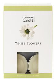 3511 White Flowers