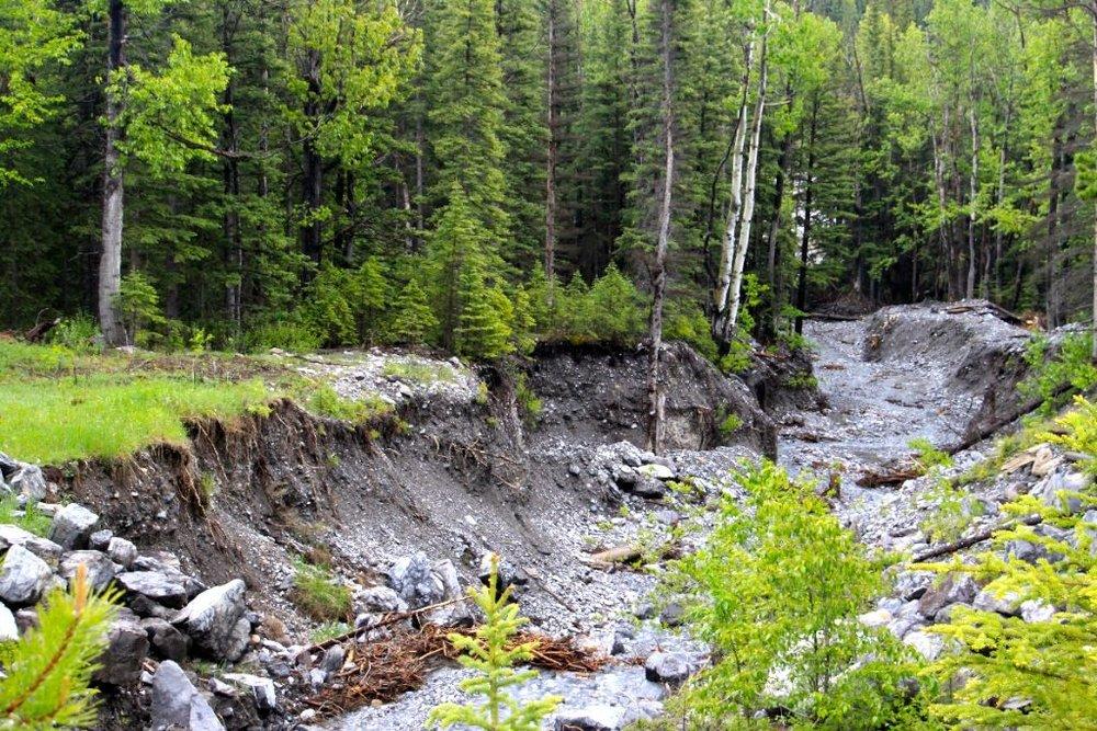 Wildbach + alpine Schutzmaßnahmen