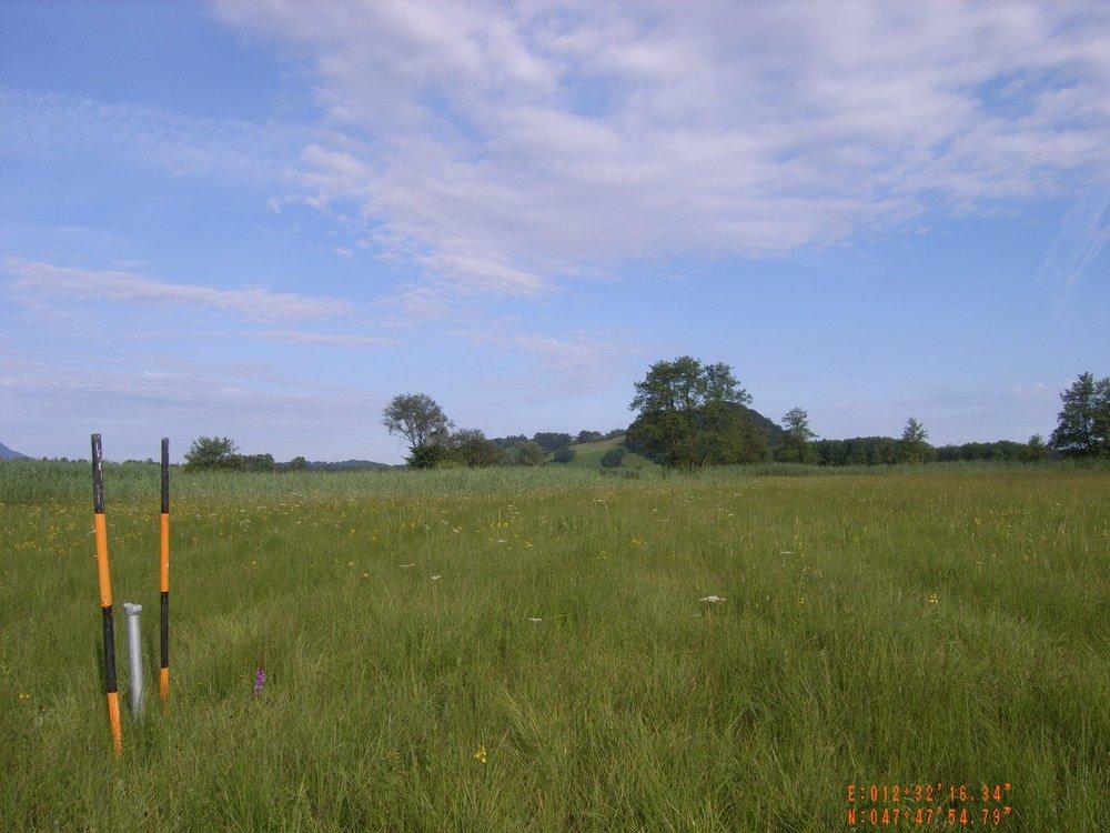 Monitoring oberflächennaher Grundwasserstände in einem Moorgebiet durch Grundwasserpegel