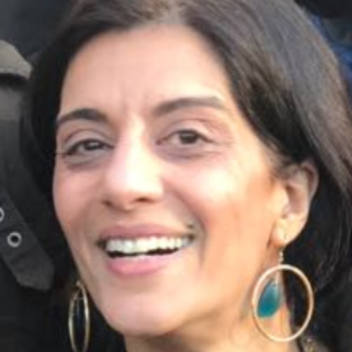 Sanam Anderlini - Executive Director at International Civil Society Action Network