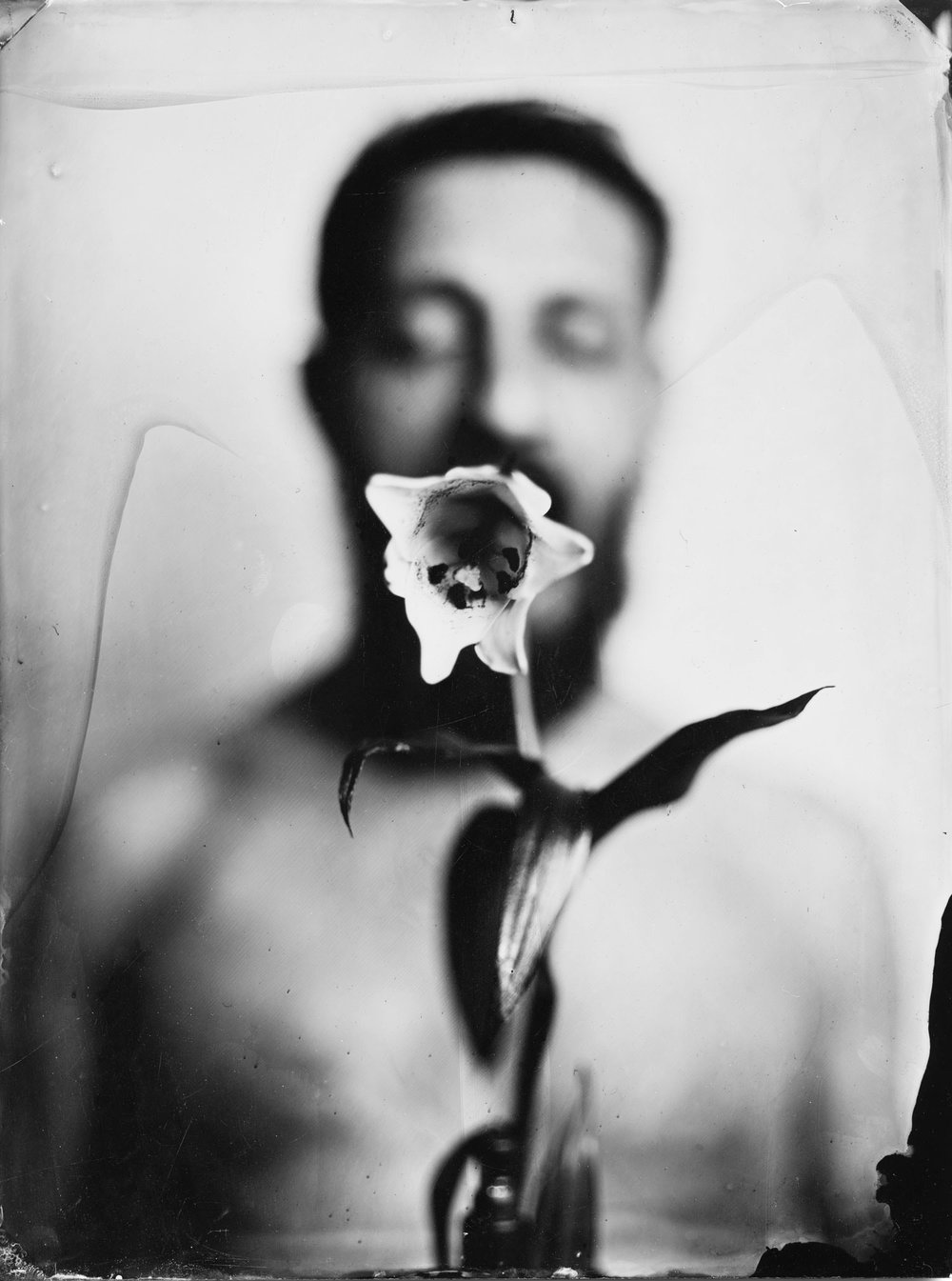 smallflower1.jpg