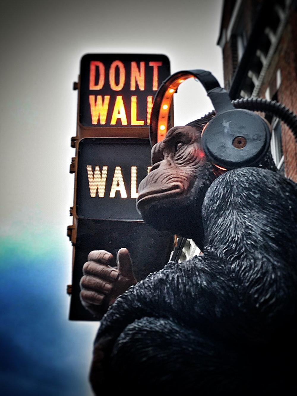 gas-monkey_2018_02a.jpg