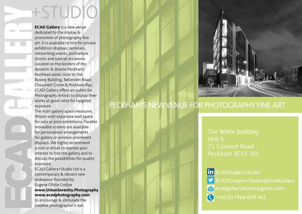 ECAD Gallery A5 Poster-Lime Rear- Updated.jpg