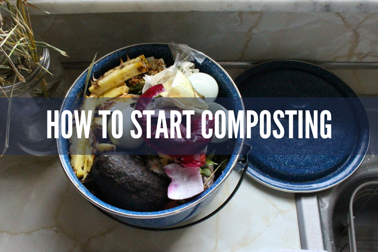 how-to-start-composting.png