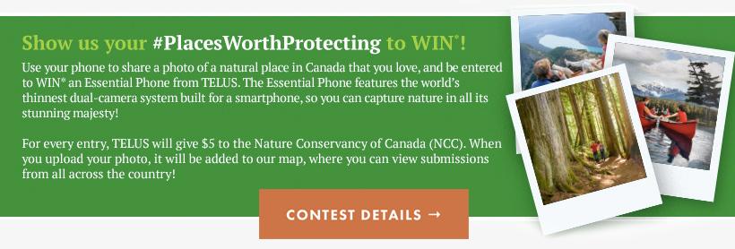 contest-banner3.jpg