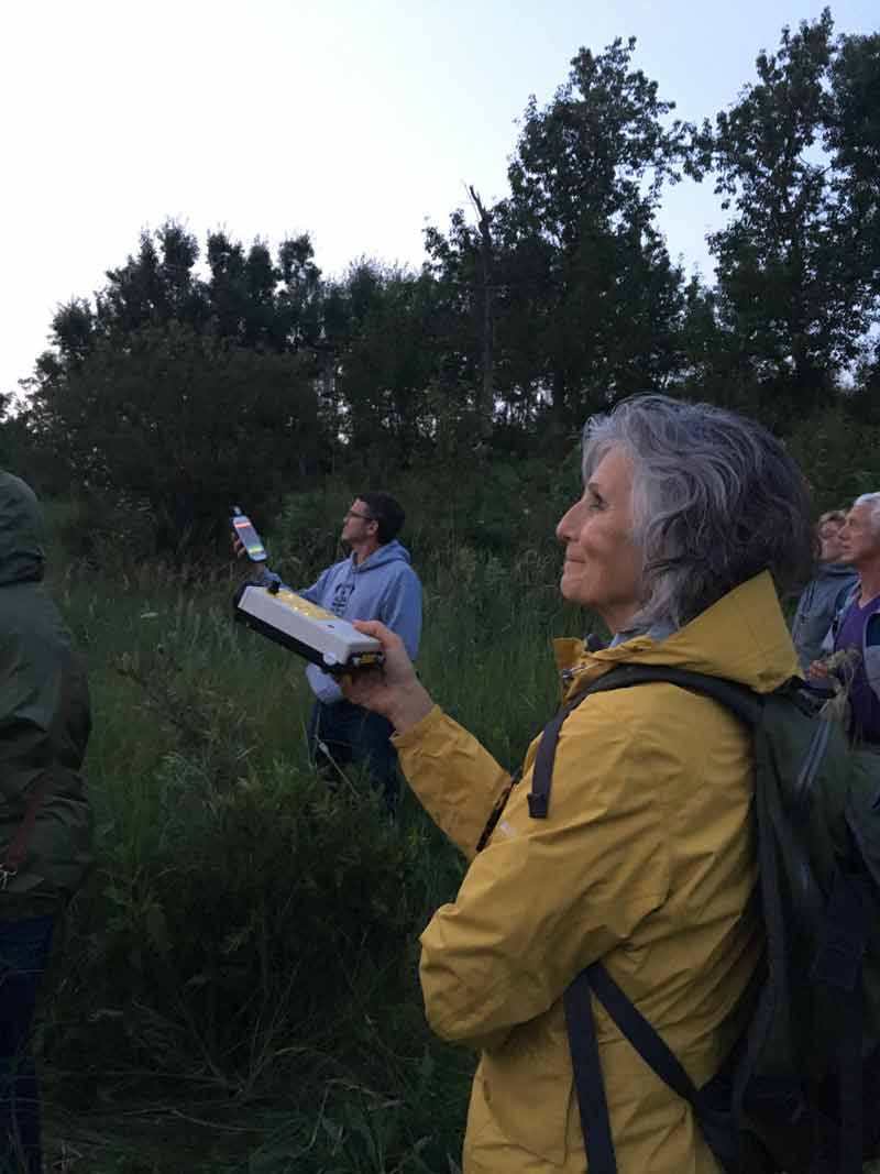 Bat Detector Being Used Near Gambling Lake, Alberta