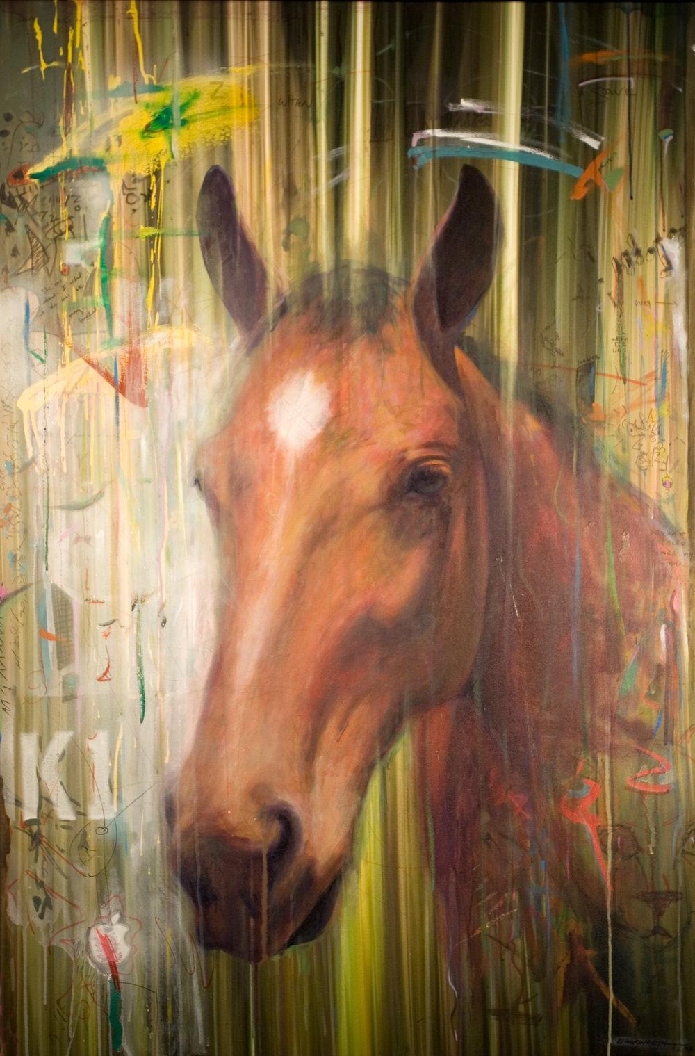 caballo_02.jpg
