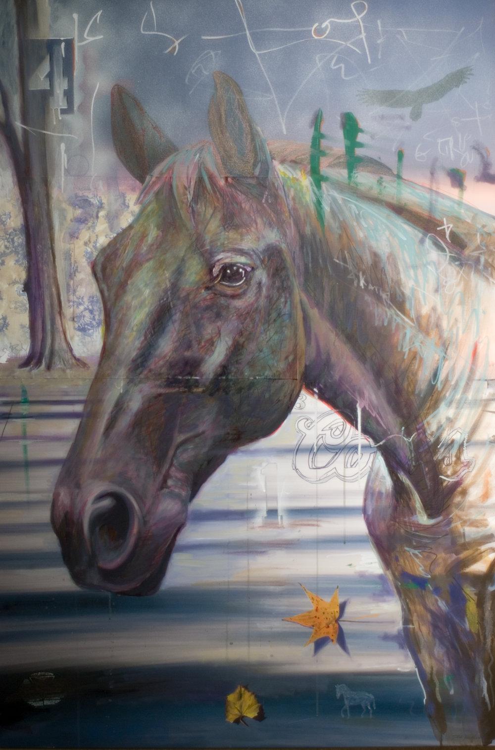 caballo_03.jpg