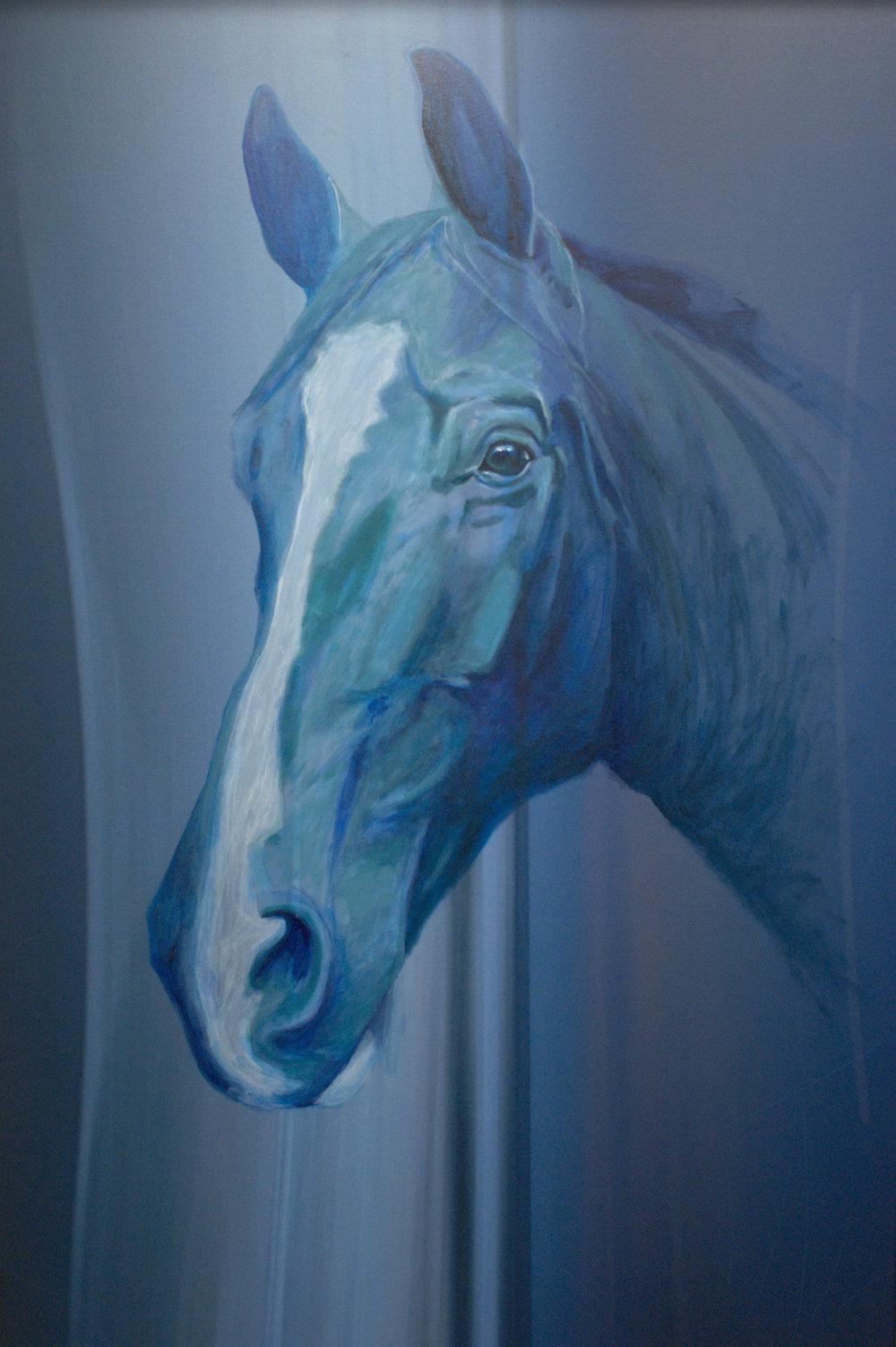 caballo_04.jpg
