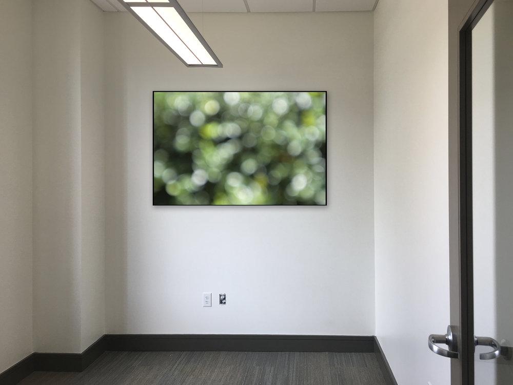 No.34-2 Dr Office Last / Option 2