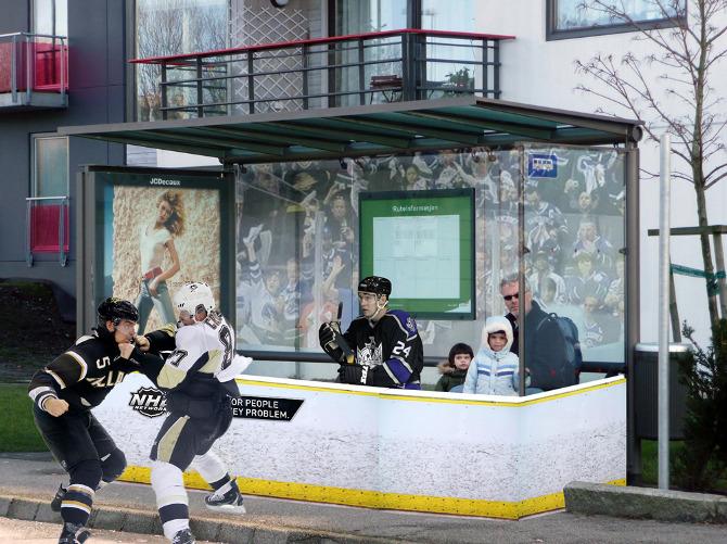 NHL_Bus3.jpg