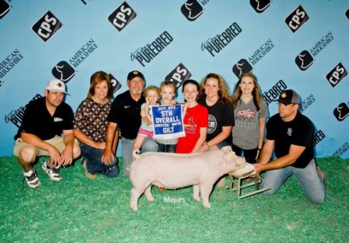5th Overall Chester Gilt | World Pork Expo 2017