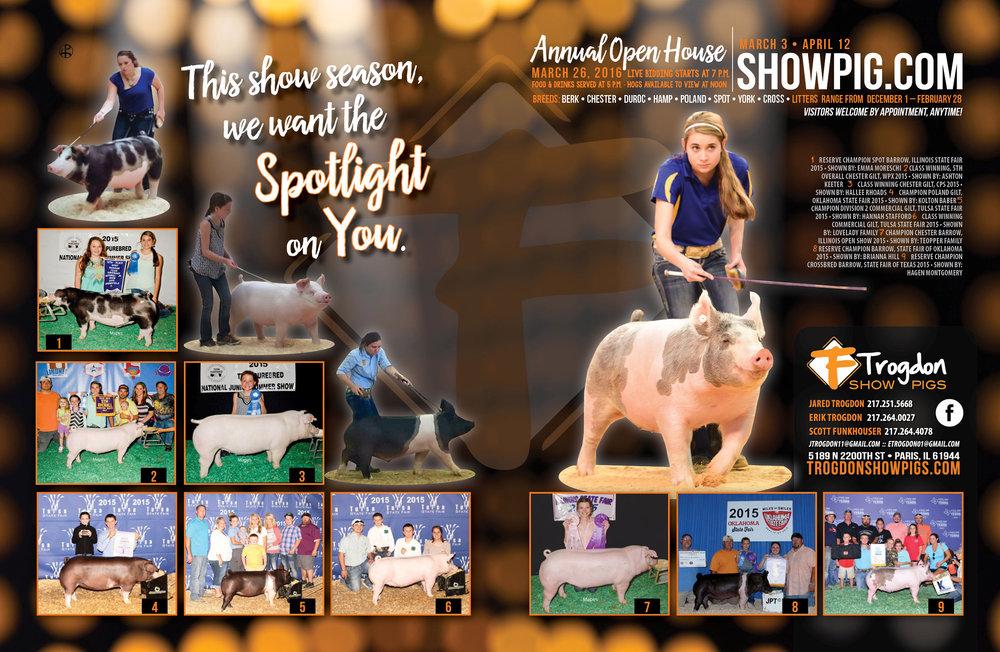 Trogdon-Show-Pigs_s16_spotlight-ad.jpg