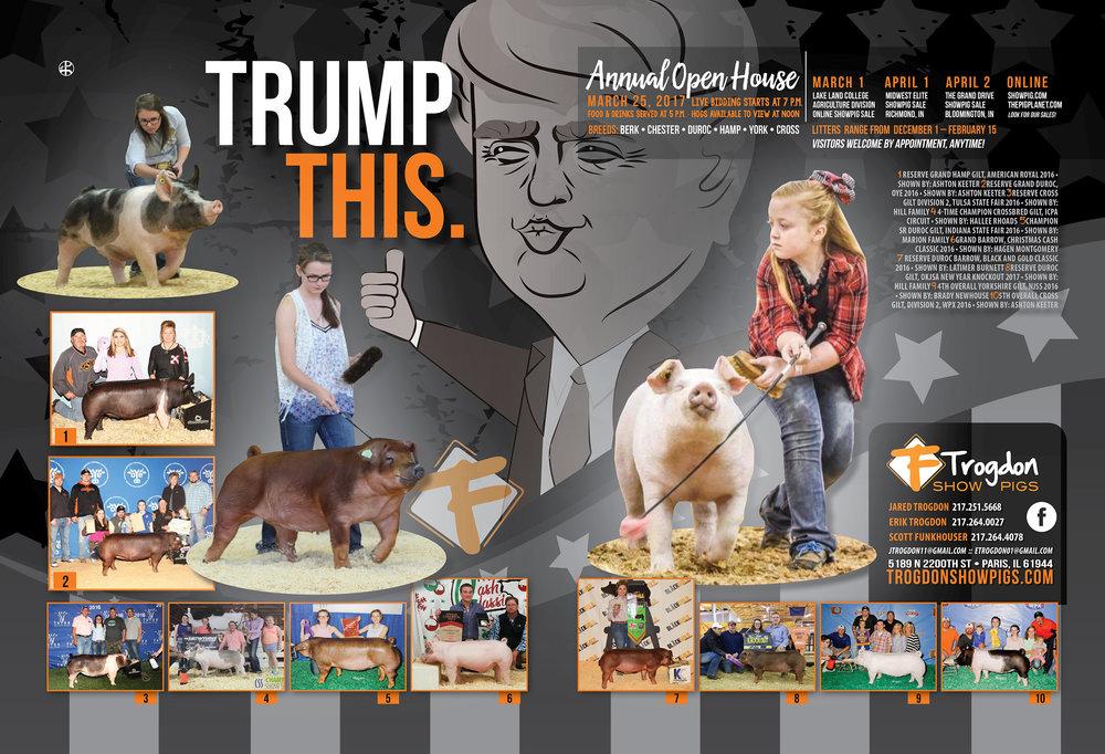 Trogdon-Show-Pigs_s17_trumpthis-ad.jpg