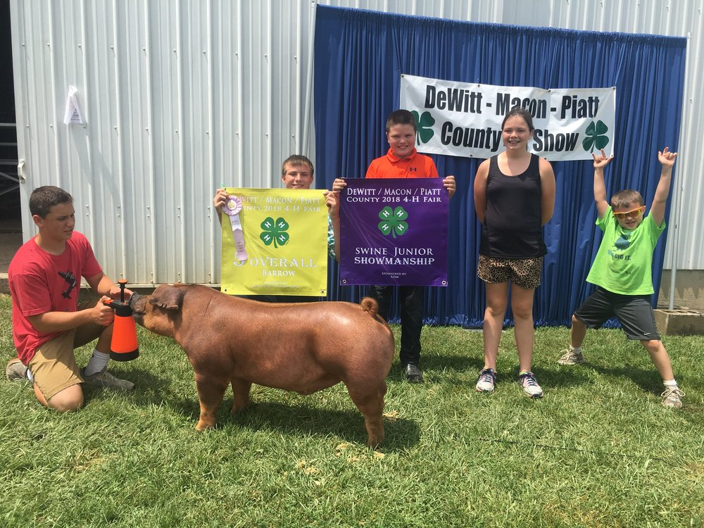 5th Overall Barrow | DeWit - Macon- Piatt County Show 2018