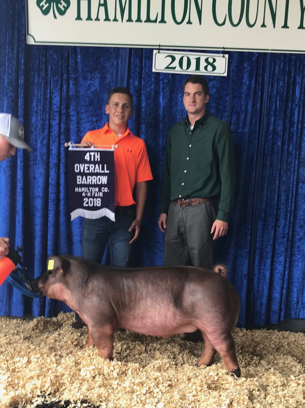 4th Overall Barrow | Hamilton County 4-H Fair 2018