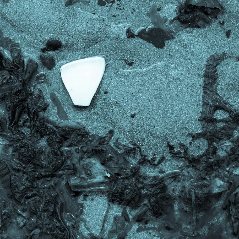 Plastic shard