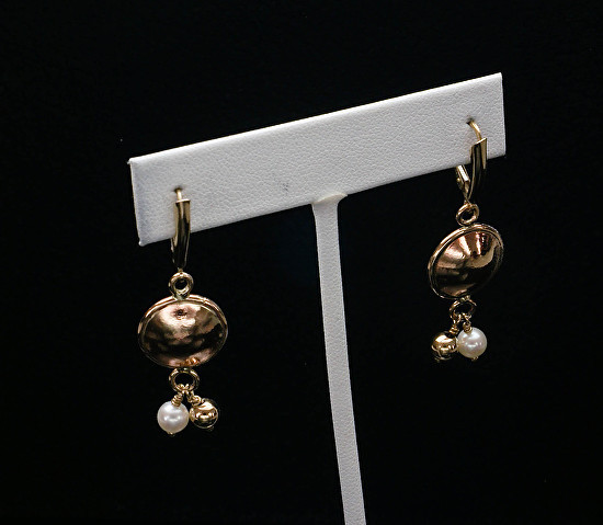 Gold Filled and Brass Earrings
