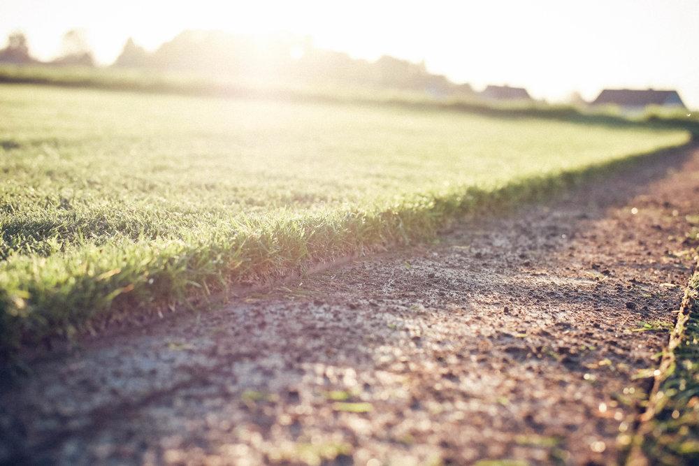 Die Vorbereitung des Bodens - Die Vorbereitungen sind das A und O für ein schönes Endergebnis Ihres Traumrasens. Bevor der neue Rasen verlegt werden kann, muss die Fläche von der alten Grasnarbe (Bspw. mit einem Sodenschäler) befreit werden. Unkraut oder sonstige Verunreinigungen werden ebenfalls entfernt.Bei Neuanlage der Rasenfläche ist darauf zu achten, dass der Boden eine gute Wasserführung/Entwässerung hat. Bei stark lehmigen Boden sollte etwas Sand eingearbeitet werden, bei stark sandigen Böden empfiehlt sich eine Zugabe von Humus.Die Festigkeit des Bodens ist entscheidend für die Ebenheit der späteren Rasenfläche. Ein zu lockerer Boden führt zu späteren Unebenheiten. Er sollte trittfest sein. Hier kann eine Handwalze für die Verfestigung zur Hilfe gezogen werden. Im Anschluss des Walzens können Ungleichmäßigkeiten festgestellt und ausgebessert werden.Um eine optimale Nährstoffversorgung zu gewährleisten wird ein Starterdünger (link zu Verleih und Verkauf) möglichst gleichmäßig auf der Fläche verteilt - ca. 25g/m². Zum Abschluss wird das Planum mit einer Harke aufgeraut um eine gute Verwurzelung des Rasens mit dem Boden zu Gewährleisten.