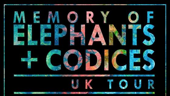 Memory of Elephants.jpeg