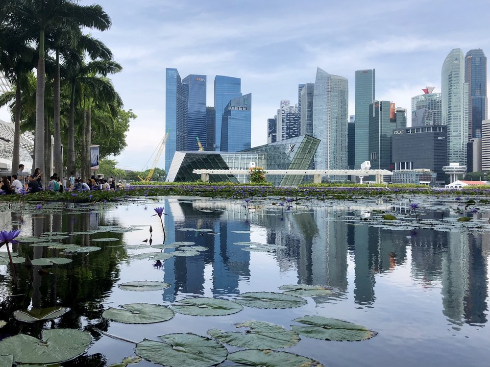 Singapore during the Day.jpg