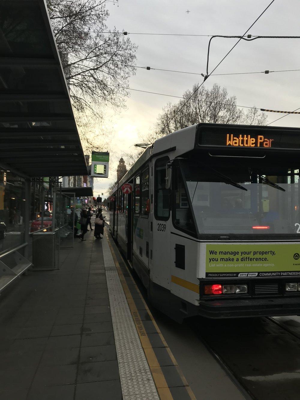 tram.jpeg