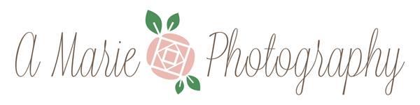 Photo Logo 2.jpg