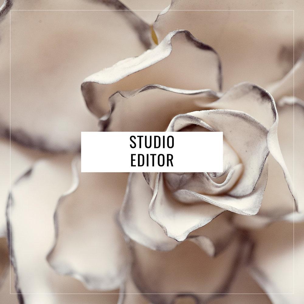 studio editor.jpg