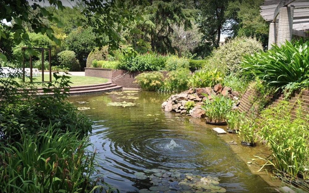 Texas-Discovery-Gardens.jpg