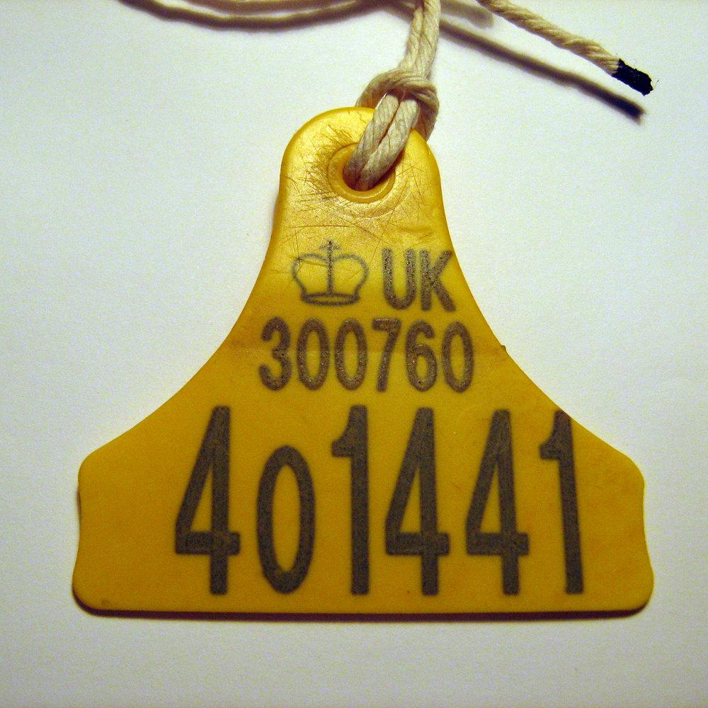 necklace11b.jpg