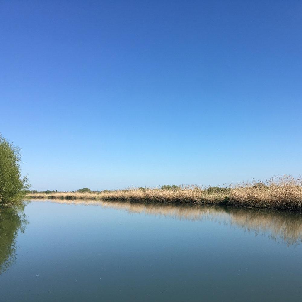 canal-9.jpg
