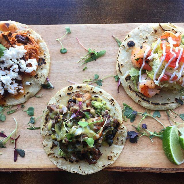 everybody's got #choices 🌮 📸: @fanielledurman #Ceremony #choices #tacos #tacotuesday #chicken #chapo #shrimp #foodiegram #foodstagram #eaterLA #EEEEEATS #infatuationLA #thrillist #LAeats #imhungryLA #hungryinLA #topfoodnews #bestofLA #discoverLA #lovefood #foodlover #foodgasm #tryitordiet #likefoodLA #nobsfood #feedyoursoull #tasteofLA #foooodieee