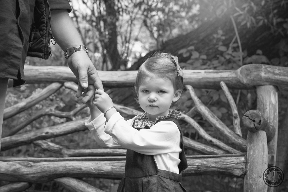 back and white image of a young girl holding her fathers fingers in front of a wooden fence at the park