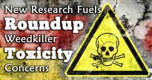 Lawsuits Piling are up against Roundup