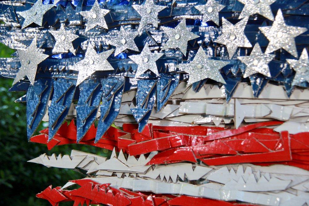 Flag #31