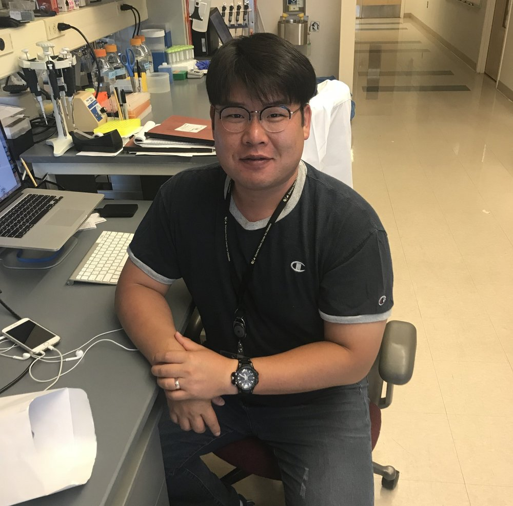 YongKyung Kim, PhD   Postdoctoral Fellow   My research focuses on the Intracellular Zinc in the beta cells. Zinc is tightly regulated, mainly bytransporters of the SLC30 (ZnT) and SLC39 (Zip) families. ZnT8 is also a major autoantigen in human T1D that is targeted by both the humoral and cellular arms of the immune system. Maintenance of optimal intracellular Zn2+ homeostasis is critical for beta cell function and survival, and reduction in ZnT8 activity leads to altered ß cell immunogenicity to adversely impact the local islet immune response.