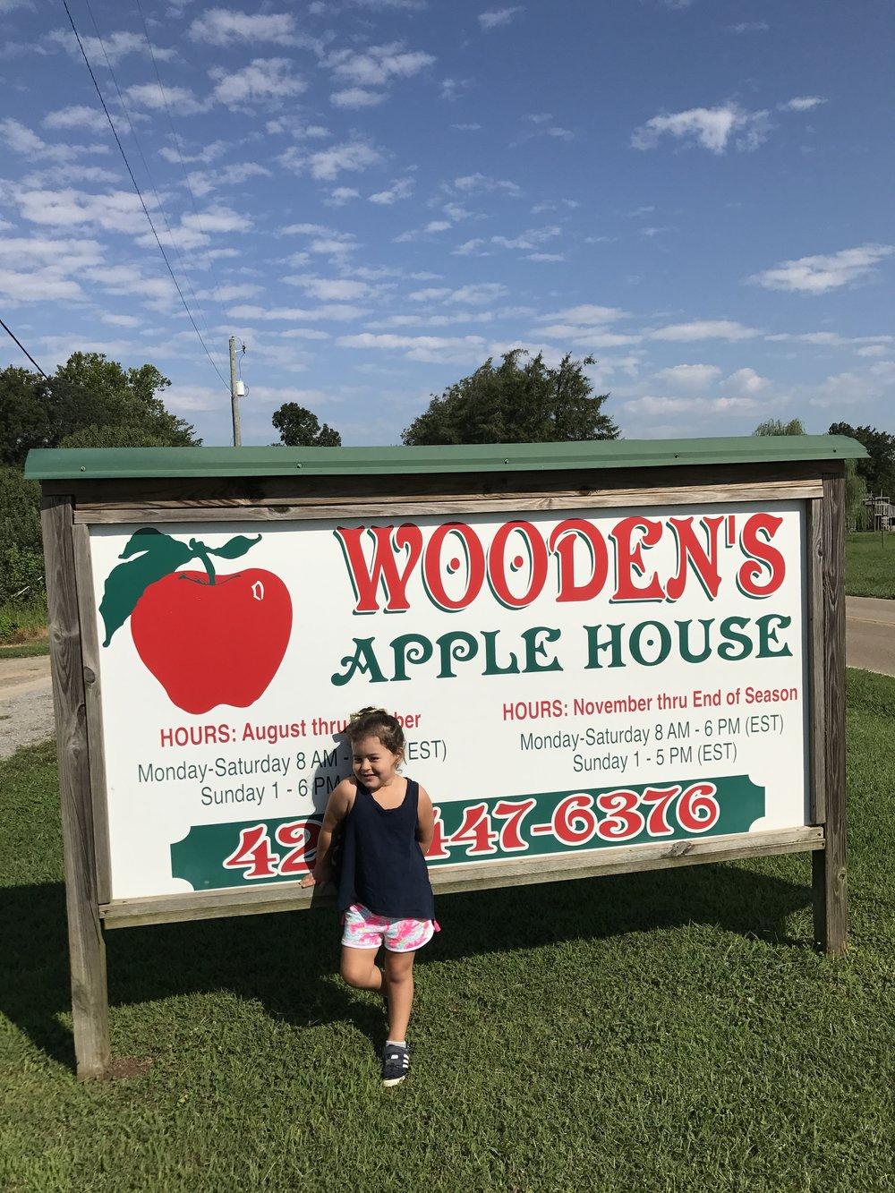 Woodens Apple House Dream Reader Kids