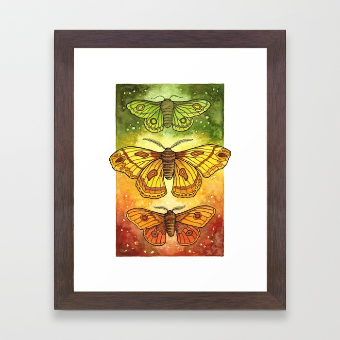 moth-trio-autumnal-twilight-framed-prints.jpg