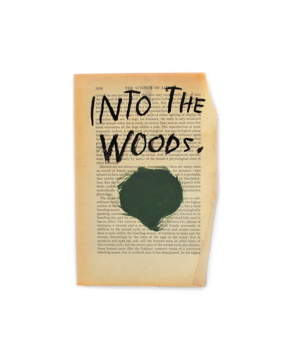 Into the woods pg.jpg