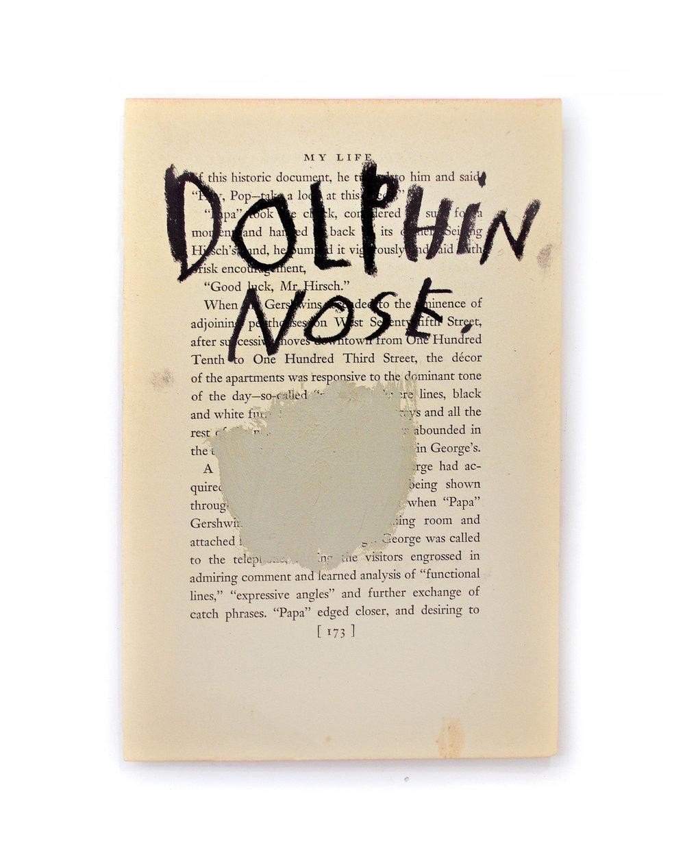 Dophin pg.jpg