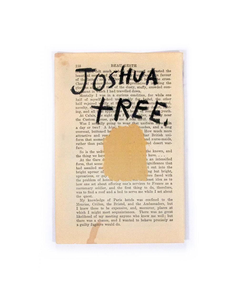 Joshua Tree PG.jpg