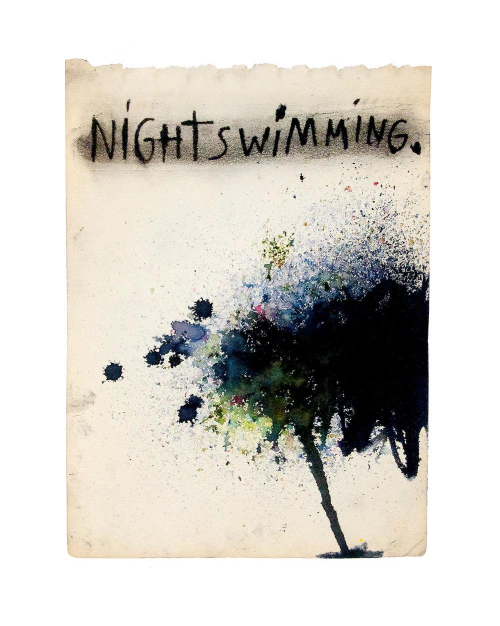 Nightswimming Pg.jpg