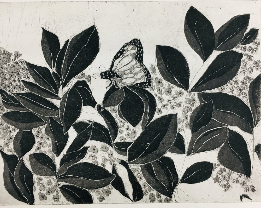 """Butterfly with Flowers copper intaglio etching 14"""" x 12"""""""