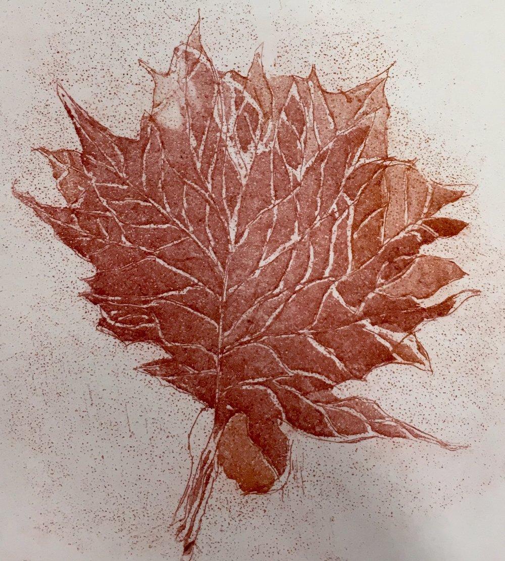"""Maple Leaf Copper Intaglio Etching 4"""" x 4"""""""