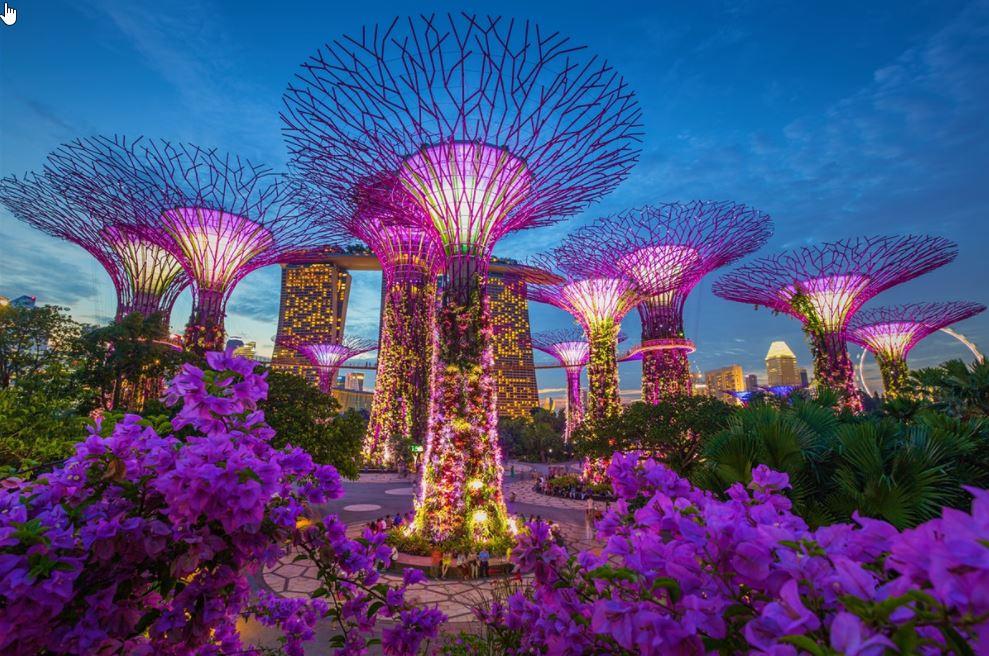 2017-10-17 14_17_26-singapore.jpg
